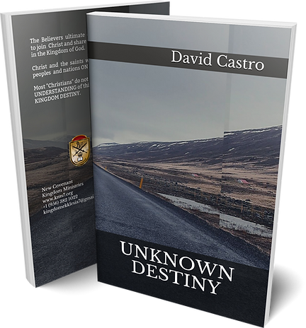 Unknown Destiny_Book Cover_Mockup.png