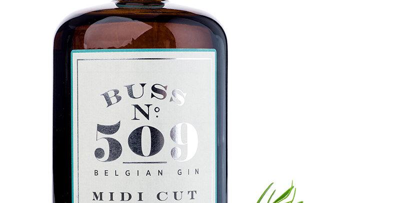 BUSSN°509 MIDI CUT