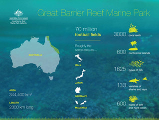 Bareboating and the Great Barrier Reef