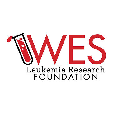 WES Foundation Logo.jpg