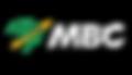 Logos parceiros-02-02.png