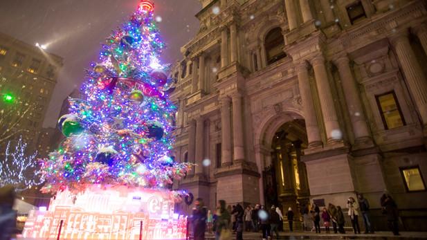 city hall holiday tree.