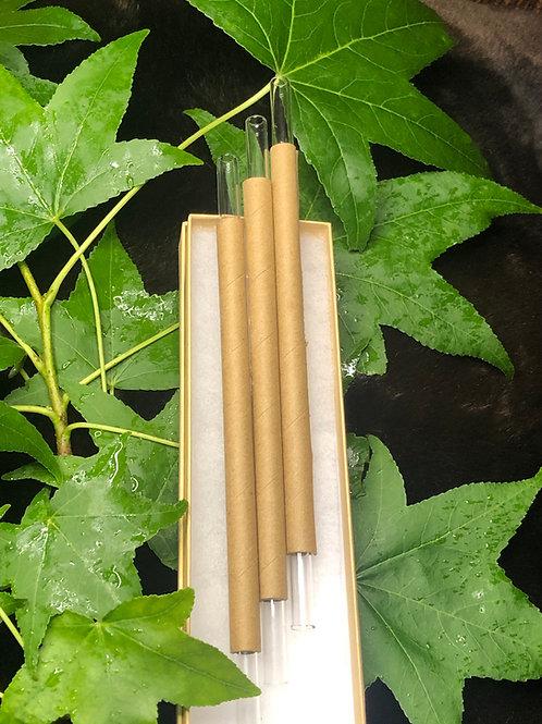 Set of 3 Borosilicate Glass Straws