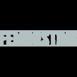 Feministing-g