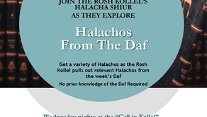 Halachos from the Daf Series
