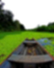 amazonas 2.jpg