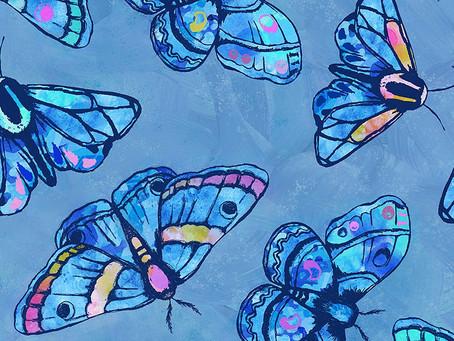 Marvelous Moths!