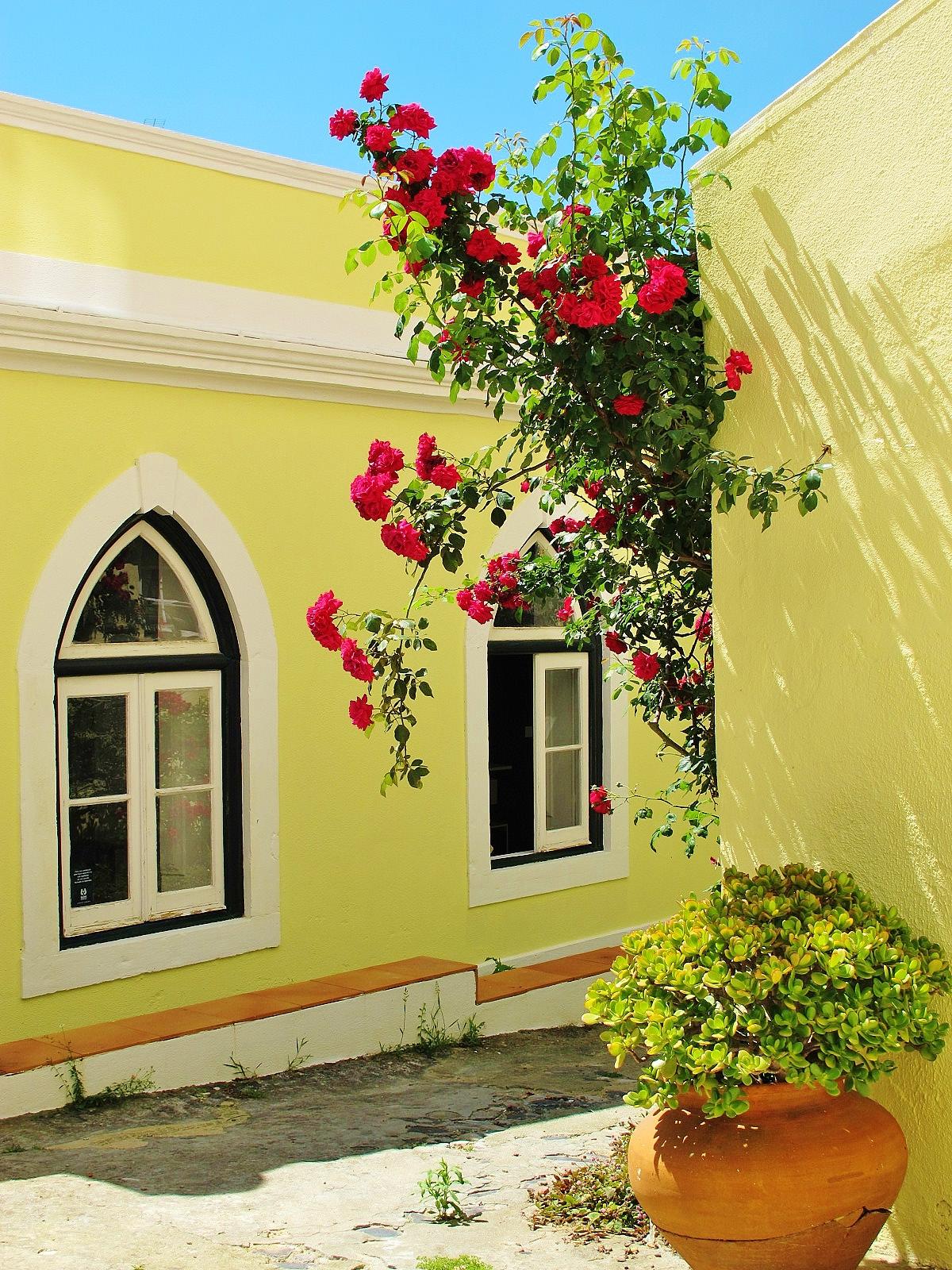 VILLA ROSA cottages