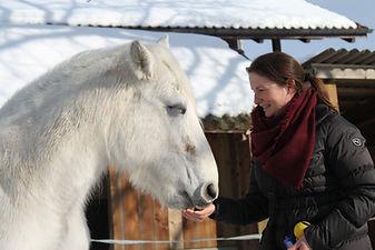 Pferd Clickertraining