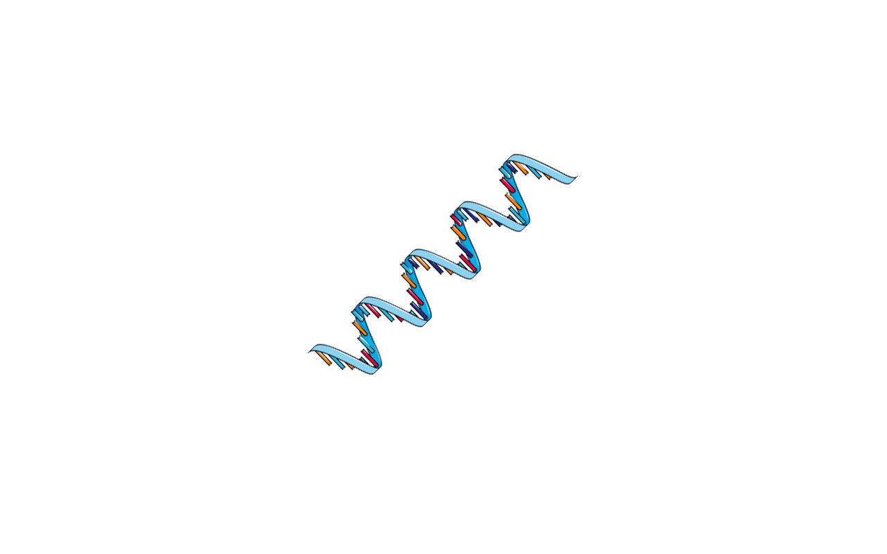4) mRNAs