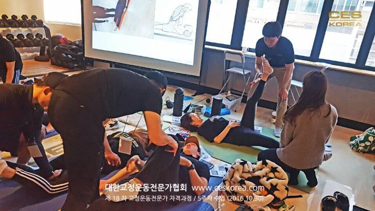 18차 CES KOREA 교정운동전문가 과정 5주차 (12)