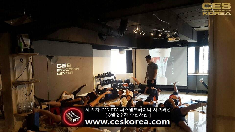 제 5 차 ces korea 퍼스널트레이너 과정 2주차 수업 (13)