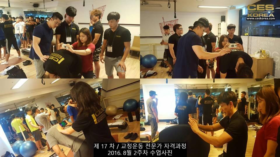 17차 ces korea 교정운동 전문가 과정 2주차 (10)
