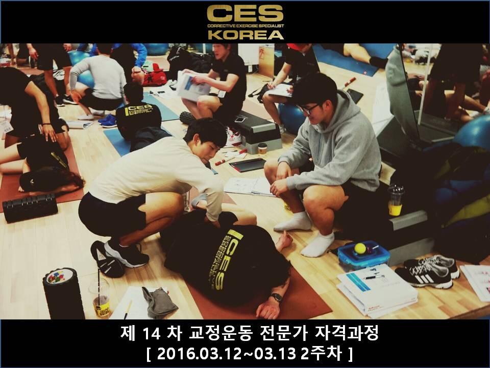 CES KOREA 14차 교정운동전문가과정 2주차 2016031213 (8).JPG