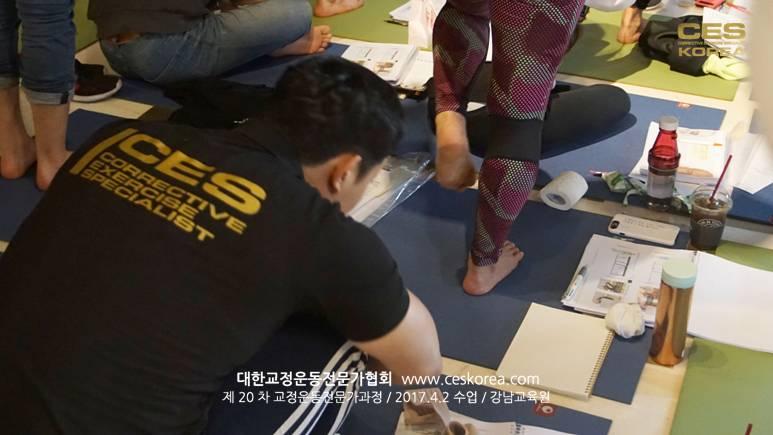 CES KOREA 20차 교정운동전문가 2주차 (5)