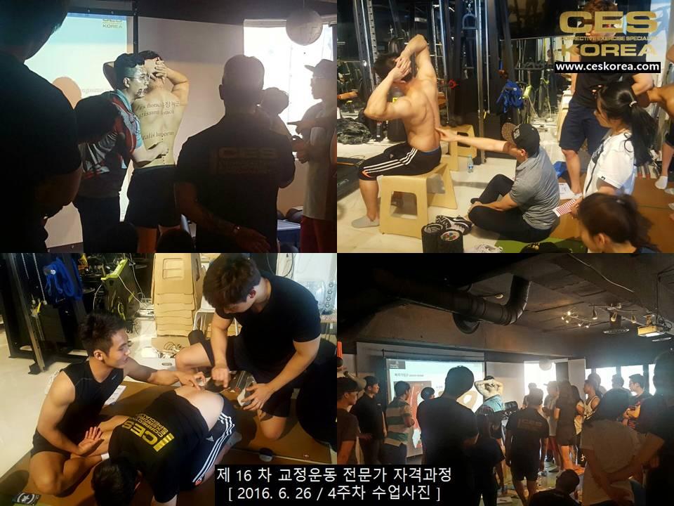 CES KOREA 제16차 교정운동전문가 자겨과정 4주차 (5)