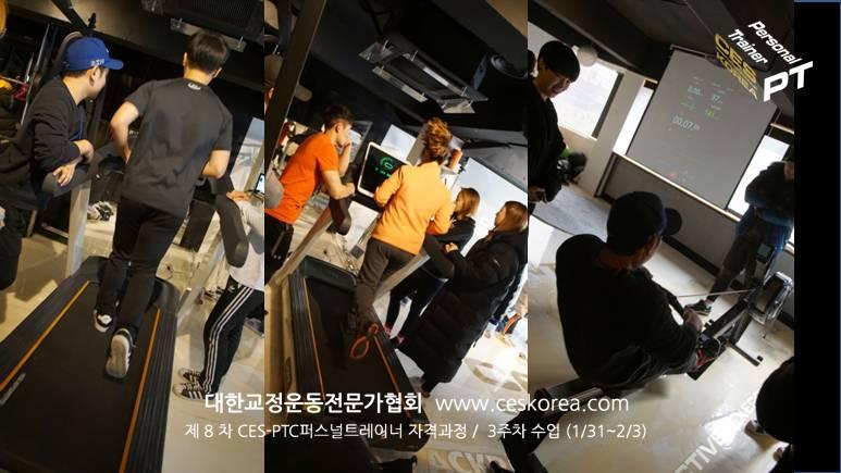 8차 CES PTC 퍼스널트레이너 과정 3주차수업 (9)