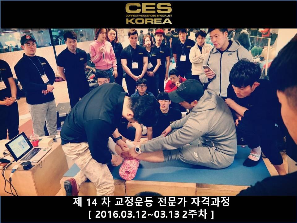 CES KOREA 14차 교정운동전문가과정 2주차 2016031213 (6).JPG