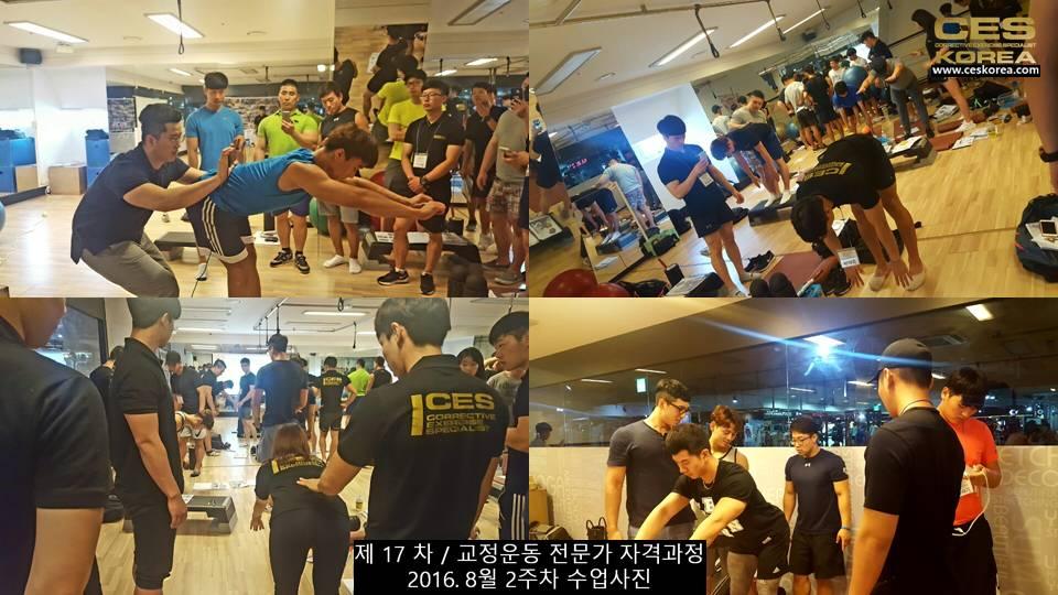 17차 ces korea 교정운동 전문가 과정 2주차 (13)