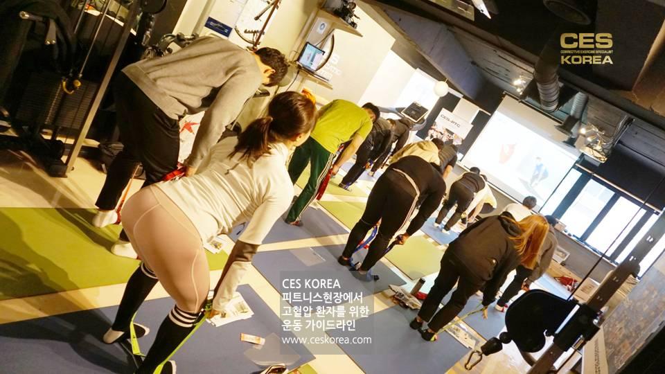 CES KOREA 고혈압 운동프로그램 (15)