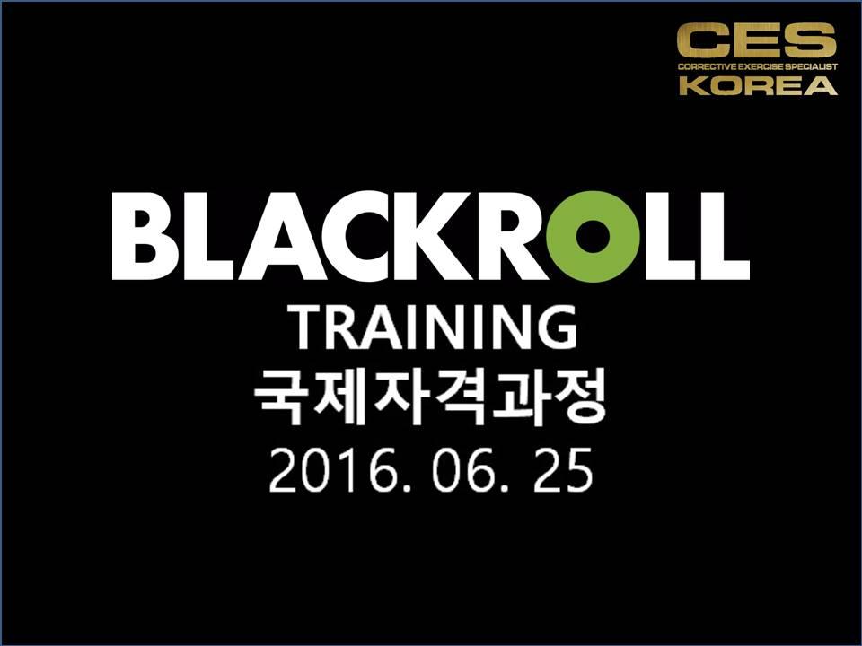 블랙롤 국제자격증 CES KOREA 2016년6월25일  (1)