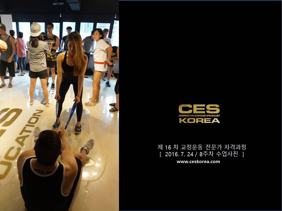 CES KOREA 16차 교정운동 전문가 과정 (13)