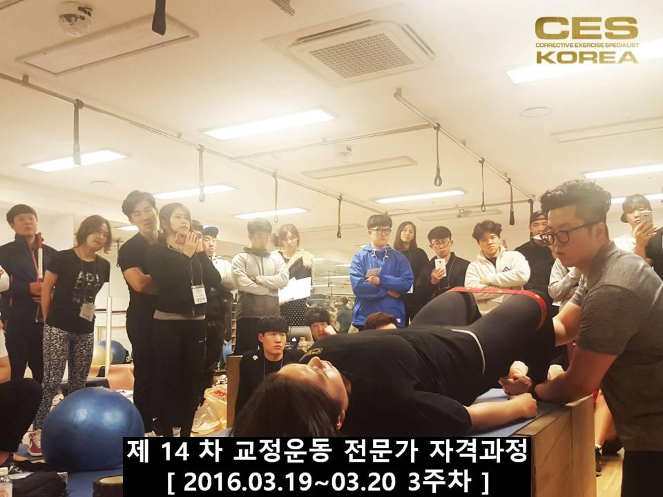 CESKOREA 대한교정운동전문가협회 14기 3주차 수업 (20).JPG
