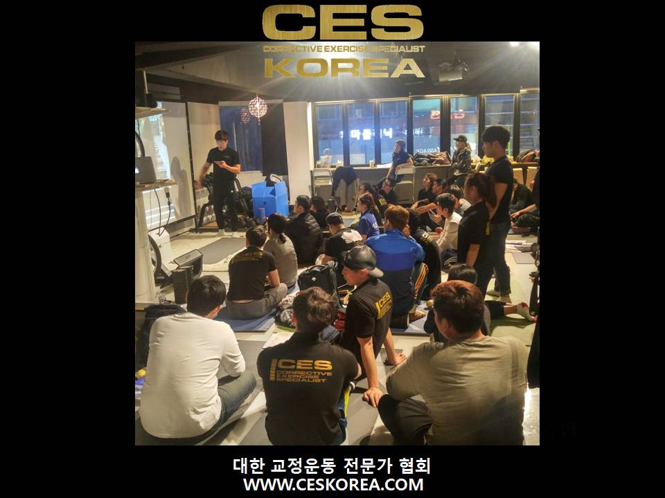 CES KOREA 12기 3주 (4).JPG