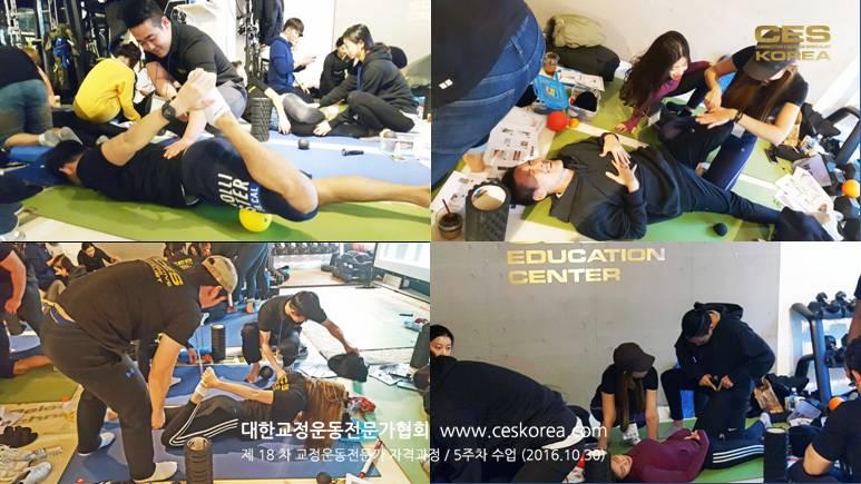 18차 CES KOREA 교정운동전문가 과정 5주차 (7)