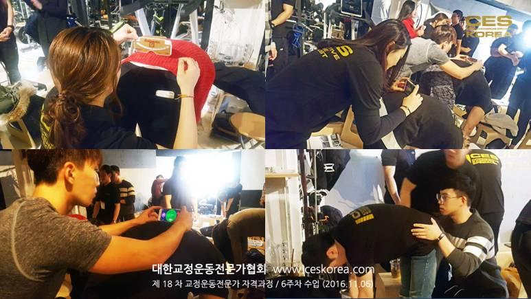 18차 CES KOREA 교정운동전문가과정 6주차 수업 (17)