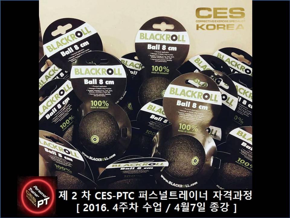CES KOREA 2기 PTC 4주차 사진 (17).JPG