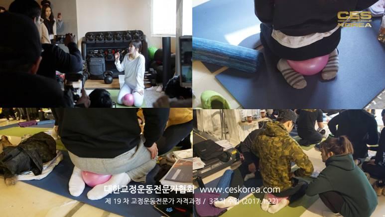 19차 CES KOREA 교정운동전문가 3주차 과정 (5)