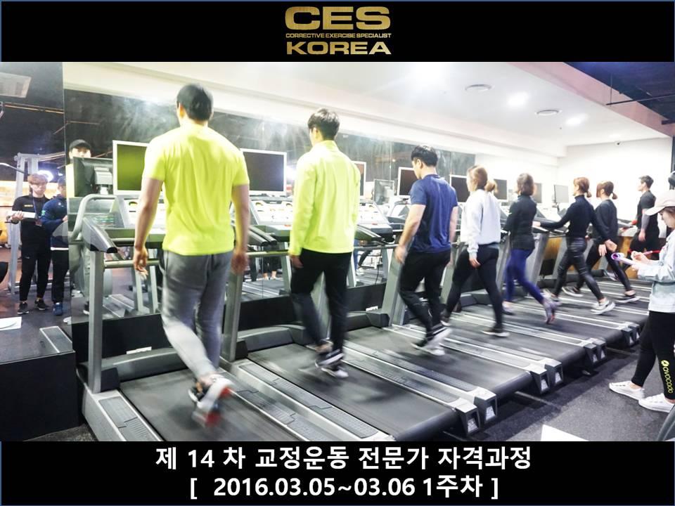 ces korea 14차 교정운동전문가 자격과정 (4).JPG