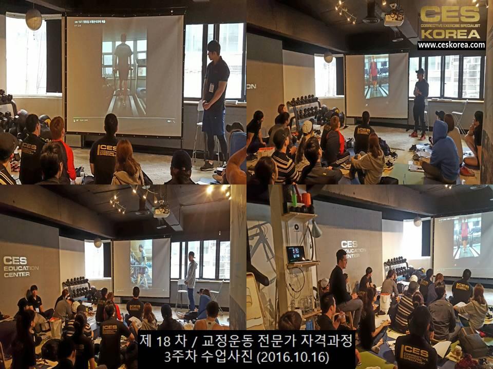 18차 CES KOREA 교정운동전문가 과정 3주차 (3)