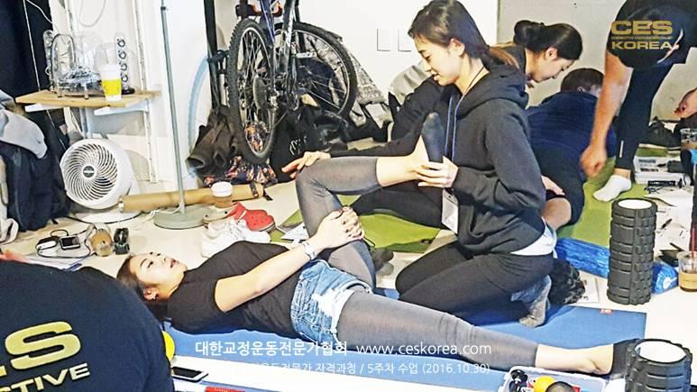 18차 CES KOREA 교정운동전문가 과정 5주차 (13)