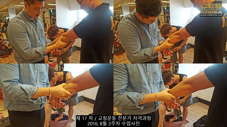 17차 ces korea 교정운동 전문가 과정 2주차 (22)