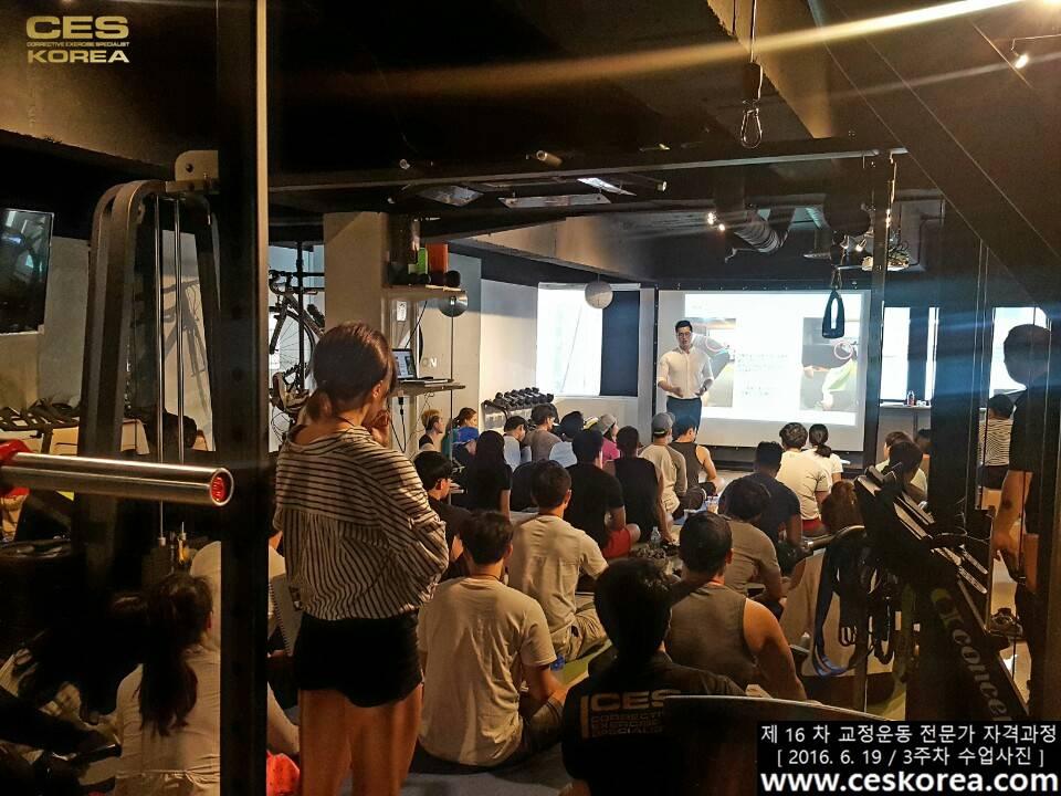CES KOREA 16차 교정운동 전문가 자격과정 3주차  (2)