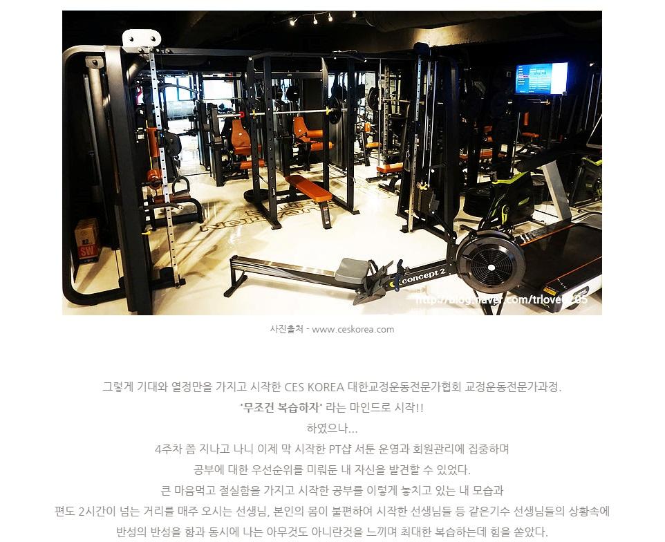 16기 CES KOREA 정락준 선생님 교정운동전문가과정 후기 (1)-8