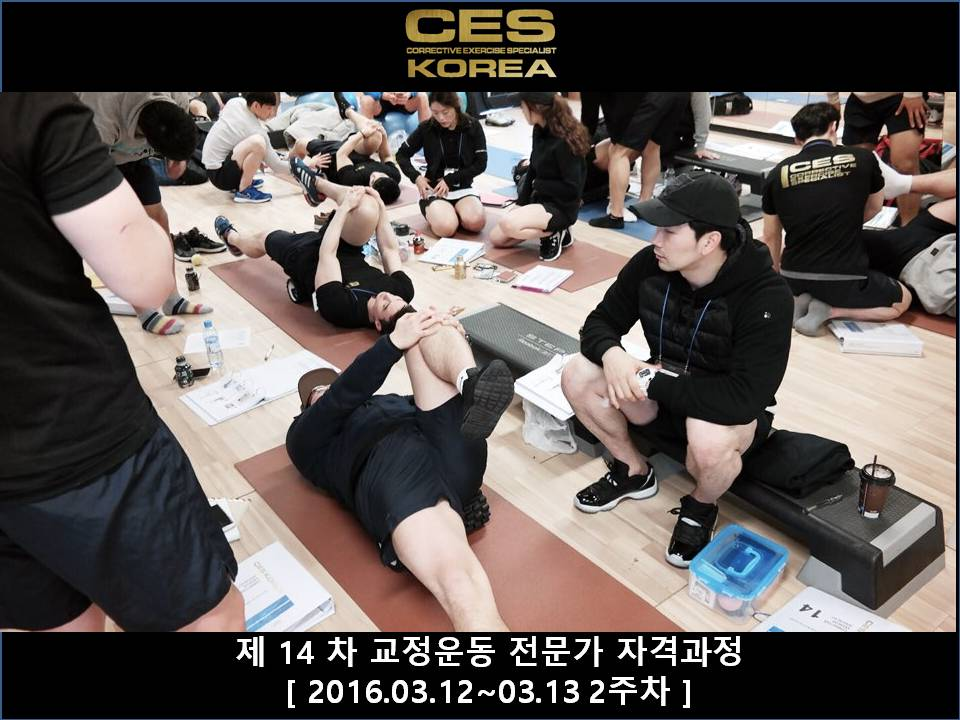 CES KOREA 14차 교정운동전문가과정 2주차 2016031213 (17).JPG