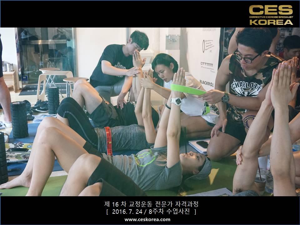 CES KOREA 16차 교정운동 전문가 과정 (3)