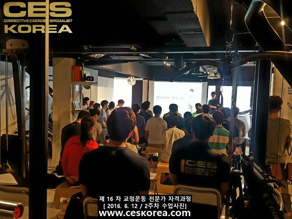 CES KOREA 교정운동전문가 자격과정 16기 2주차 수업사진 (2)