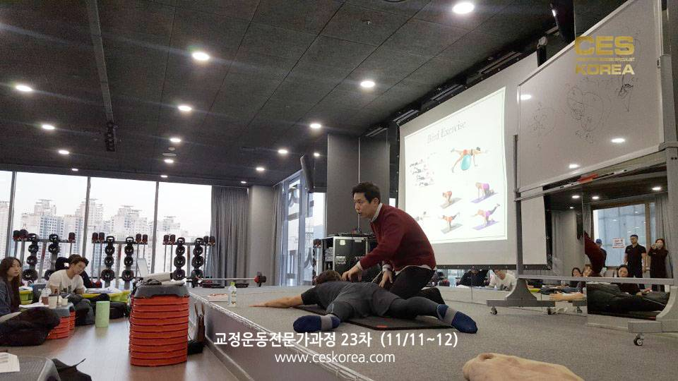 CES24차 4주차 교정운동전문가과정 (32)