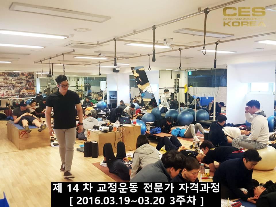 CESKOREA 대한교정운동전문가협회 14기 3주차 수업 (36).JPG