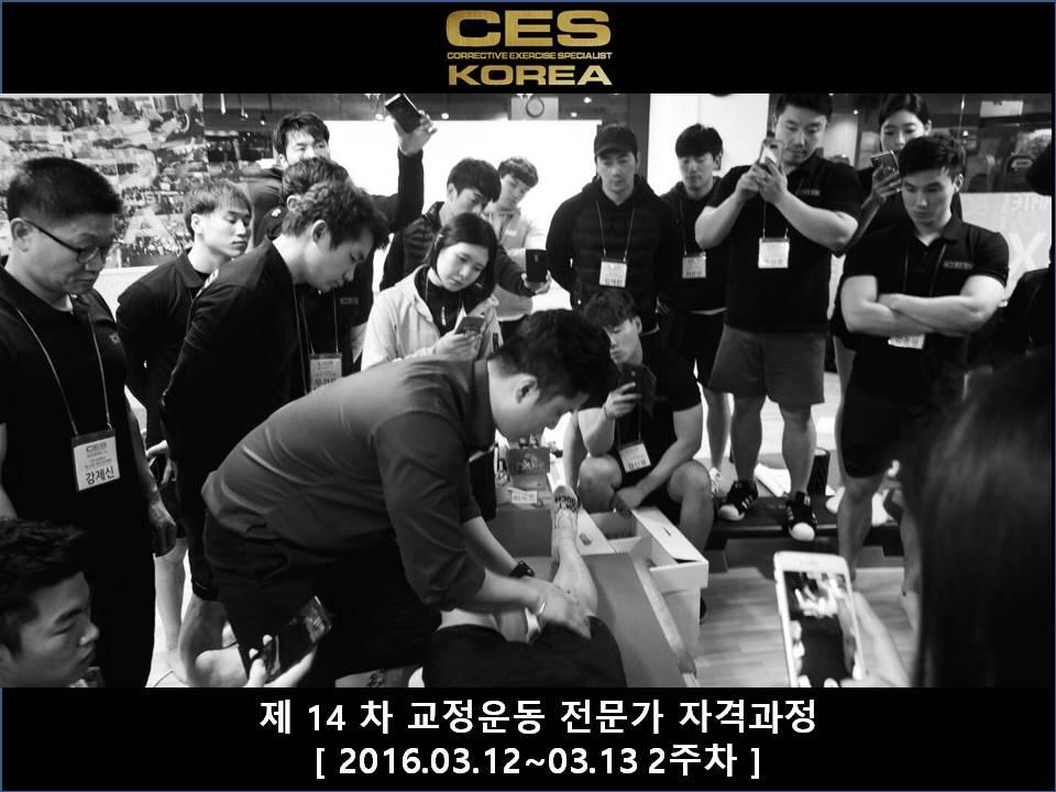 CES KOREA 14차 교정운동전문가과정 2주차 2016031213 (12).JPG
