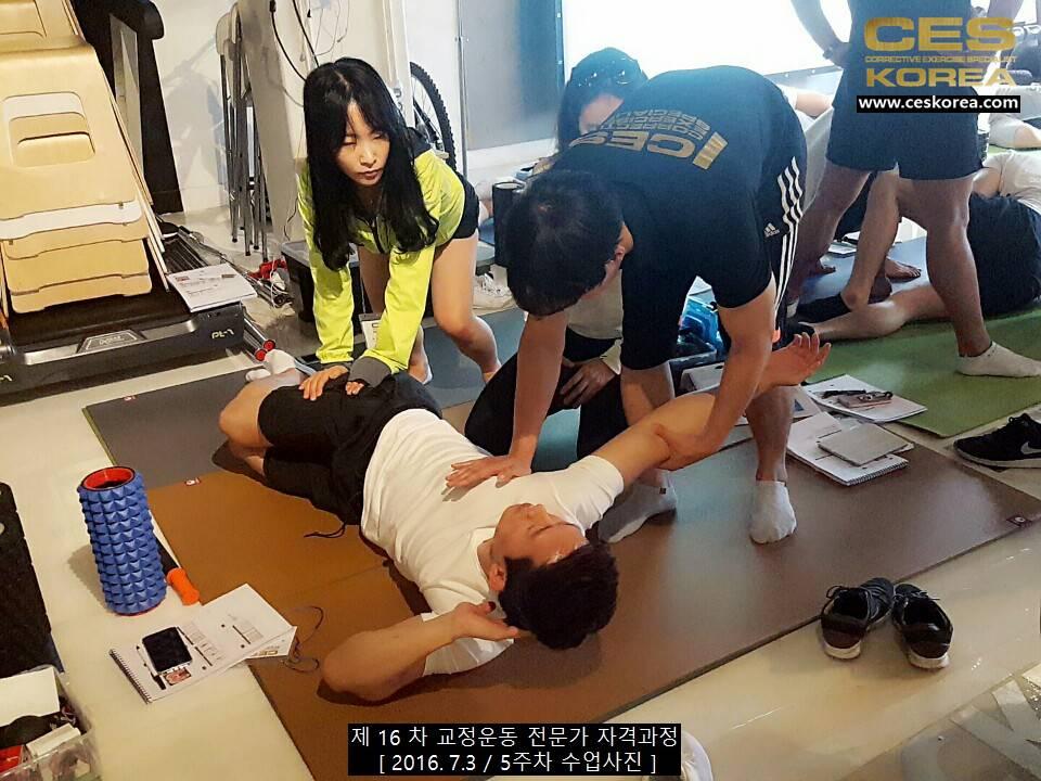 CES KOREA 교정운동전문가 자격과정 16차 5주차 (4)