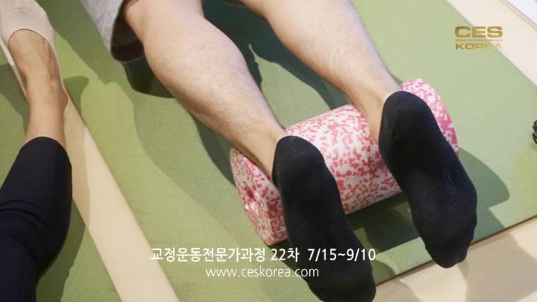 CES KOREA 교정운동전문가 과정 22차 (33)