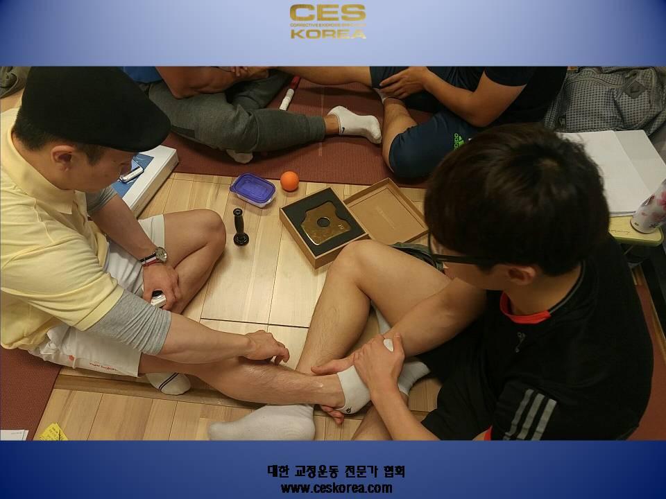 대한교정운동전문가협회 CES KOREA 부산 수업 (5).JPG