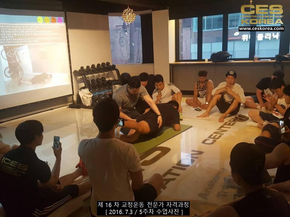 CES KOREA 교정운동전문가 자격과정 16차 5주차 (2)