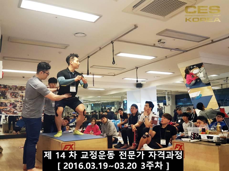 CESKOREA 대한교정운동전문가협회 14기 3주차 수업 (13).JPG