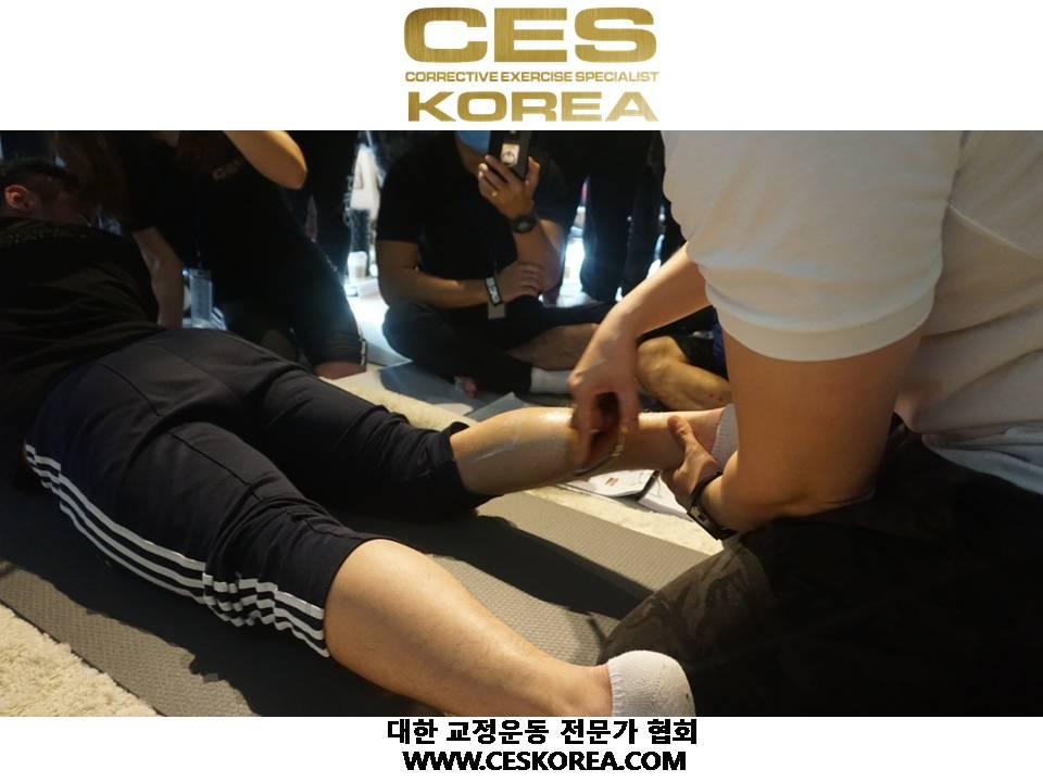 CES KOREA 12기 4주 1 (30).JPG